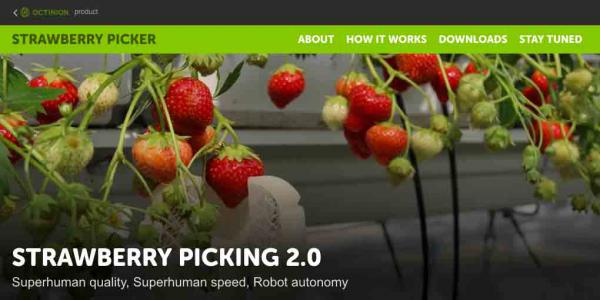 Mini site over de Strawberry Picker